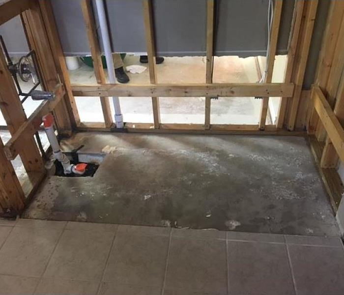Mold Infestation in San Antonio, TX  After