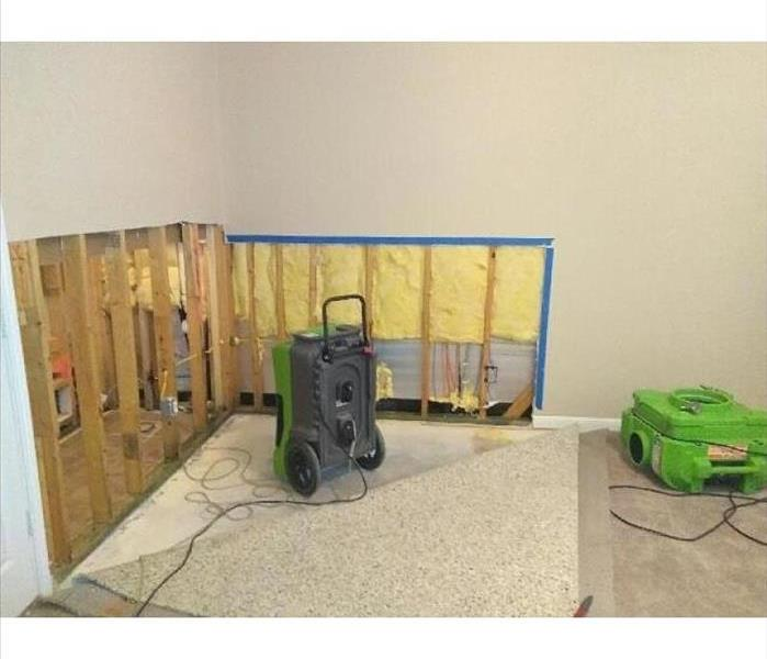 Mold Damage to House in San Antonio, Texas
