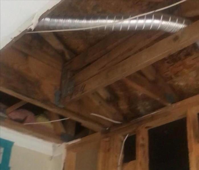 Mold infestation in an apartment complex in San Antonio