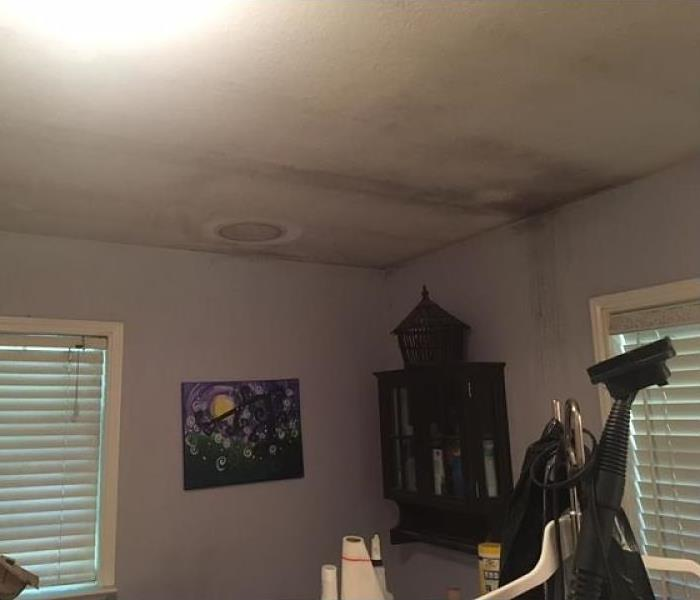 Mold Remediation San Antonio Residents:  Follow These Mold Safety Tips If You Suspect Mold